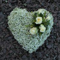 Gypsophila Heart
