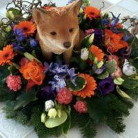 Fox Funeral Tribute